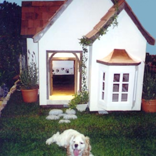 French Chateau Doghouse